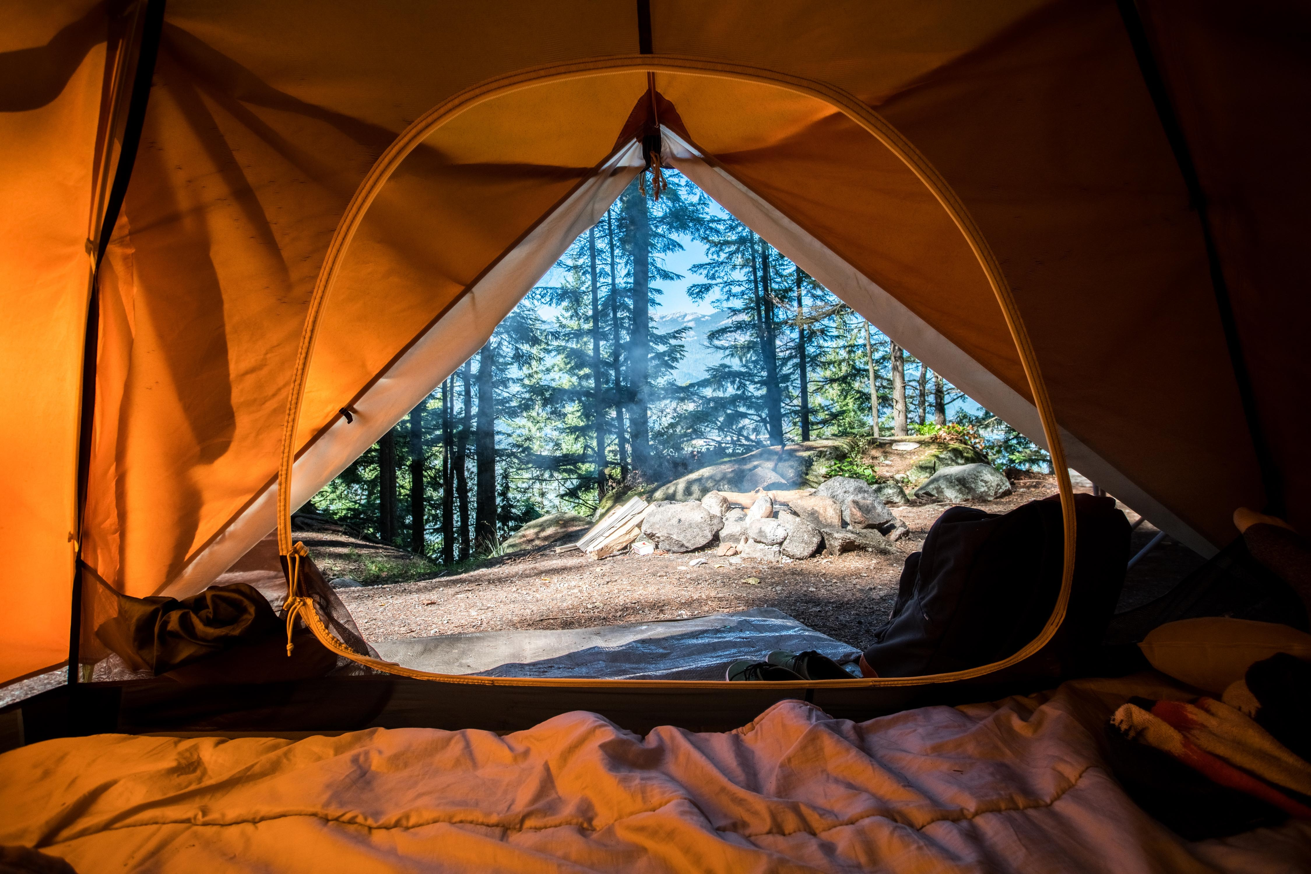 Inside a tent with a view of the forest outside.