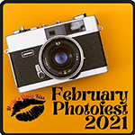 February Photo Fest badge